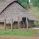 Cambodge: Difficultés des minorités ethniques à exercer leur droit de vote